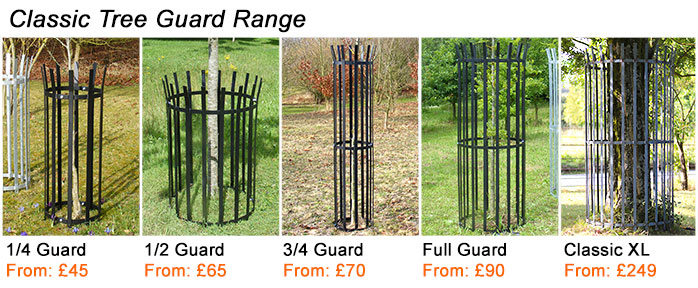 Buy classic tree guards from Designer Metal
