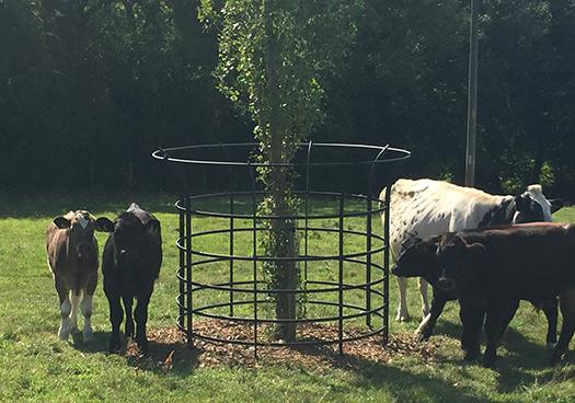 large estate guard for livestock