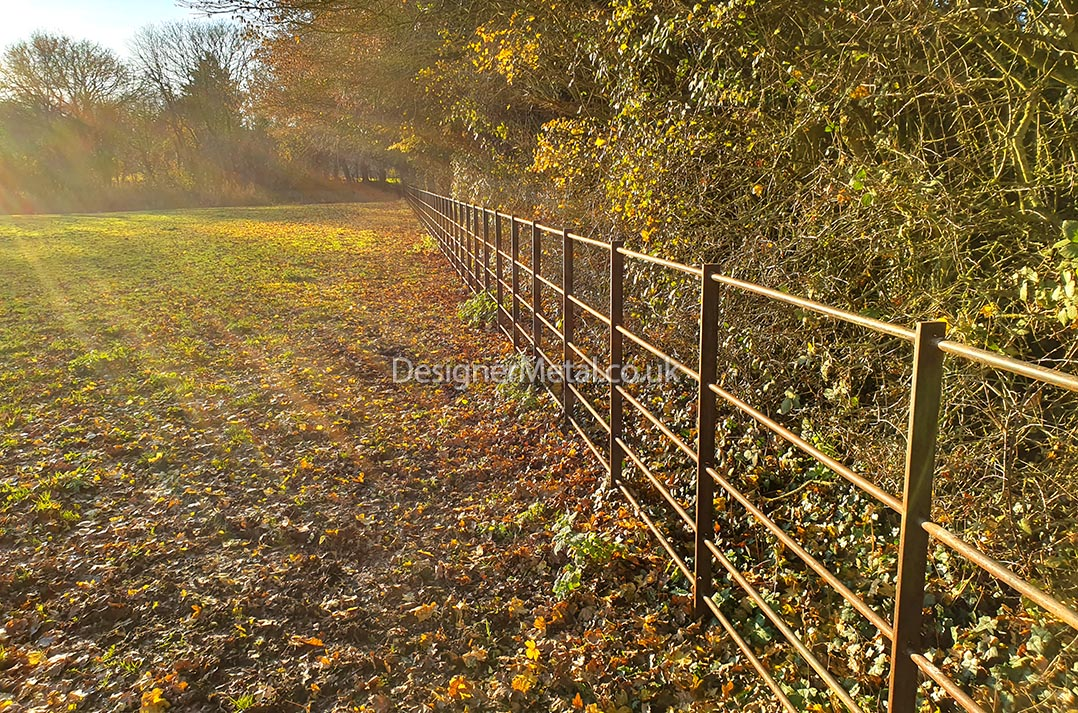 An installation of fencing which has developed an even rust surface